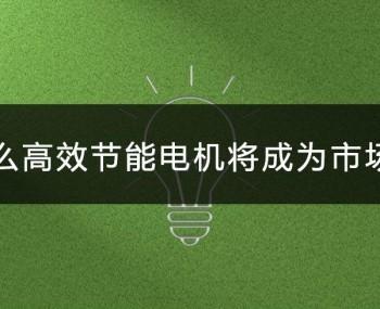 为什么高效节能电机将会成为市场主流