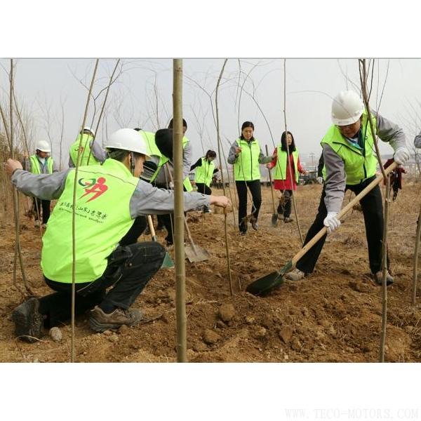 【造纸】建环保工厂 创森林城市 行业资讯 第1张