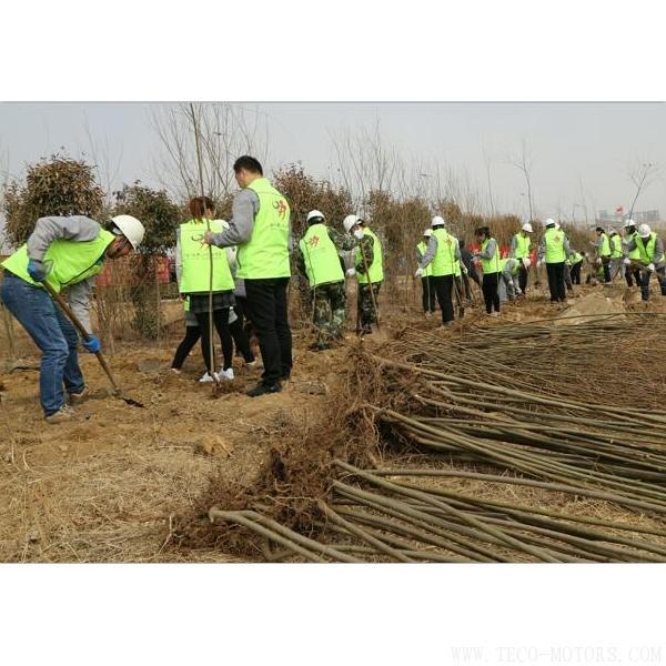 【造纸】建环保工厂 创森林城市 行业资讯 第2张